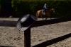2020-05-17 Alex Zell Open Ranch (106) (Small)