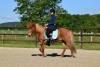 2020-05-17 Alex Zell Open Ranch (138) (Small)