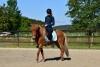 2020-05-17 Alex Zell Open Ranch (139) (Small)