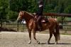 2020-05-17 Alex Zell Open Ranch (93) (Small)