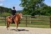 2020-05-17 Alex Zell Open Ranch (95) (Small)