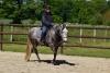 2020-05-17 Alex Zell Open Ranch (96) (Small)